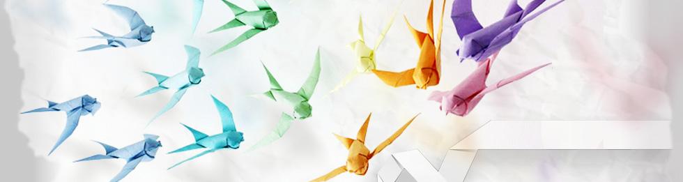 slider-blog-uccelli